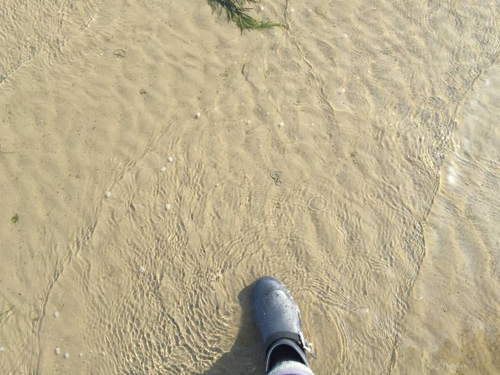 The Broomway, being under water